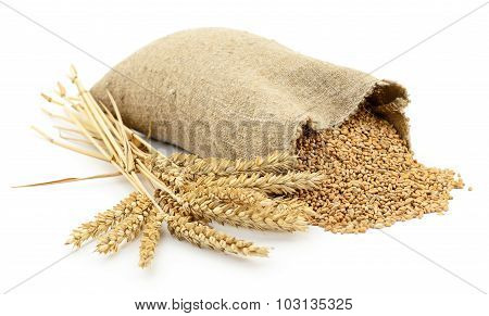Bag Of Wheat.