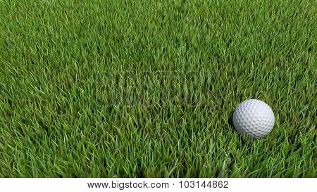 Golf Ball On Green 06