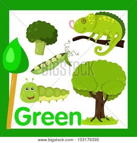 Illustrator of Green color