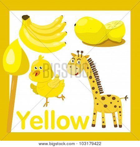 Illustrator of Yellow color
