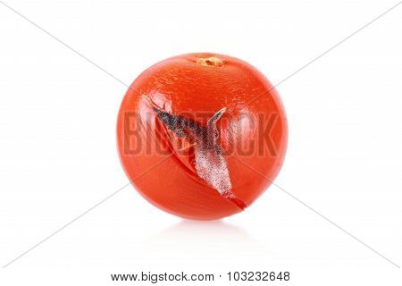 Closeup Photo Of A Moldy Tomato