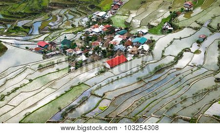 Village houses near rice terraces fields. Amazing abstract texture with sky colorful reflection in water. Ifugao province. Banaue Philippines UNESCO heritage poster