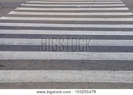 White Pedestrian Crossing On Asphalt In Krivoy Rog