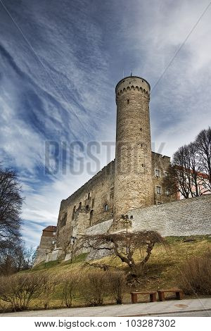 Toompea castle in old Tallinn