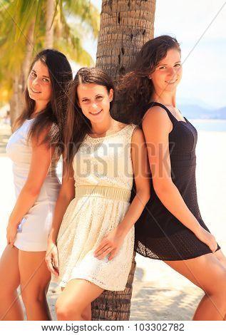 Three Brunette Slim Girls Lean On Palm On Beach