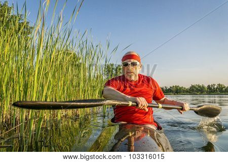 Senior male paddler is paddling a racing sea kayak along shore covered by reed