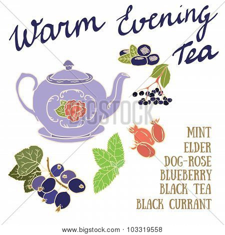 Delicious autumn Warm Evening tea recipe with black currant, blueberry, dog rose and elderberries.