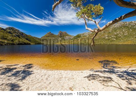 Lake Dove Tasmania