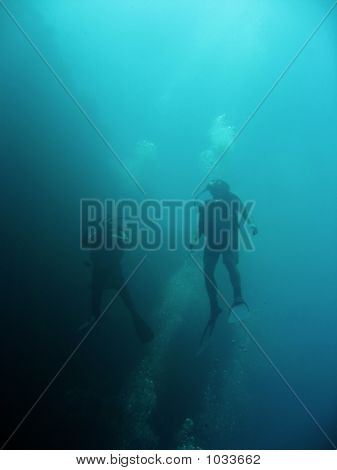 Blue Divers