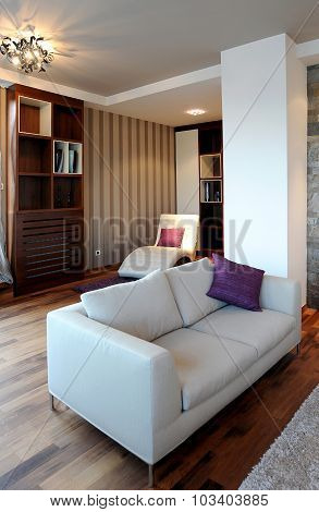 Modern living room interior with white sofa