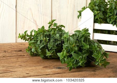 Bunch Of Fresh Spearmint On Wooden Bench