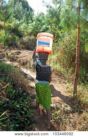 August 8, 2014-Mountain of Kilolo-Tanzania-Africa-An unidentified girls as they climb the difficult ascent from the river with in head two buckets full of water a task that mostly only children perform