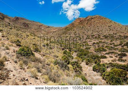 Desert near Cabo del Gata, Almeria, Spain