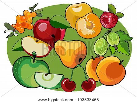 Image Of Several Fruits Image