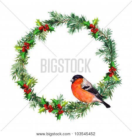 New year wreath - spruce and bullfinch bird. Watercolor