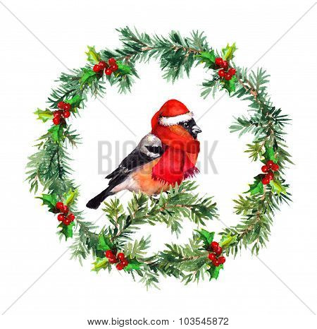 Christmas wreath - fir, mistletoe and bullfinch bird in santa hat. Watercolor