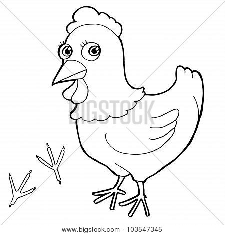 hen with paw print Coloring Pages vector
