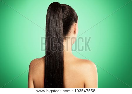 Pony Tail Hair, View From The Back