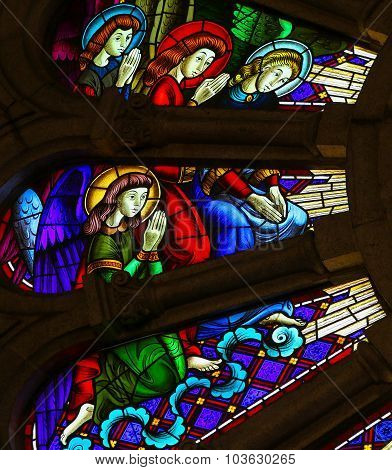 Angels - Stained Glass