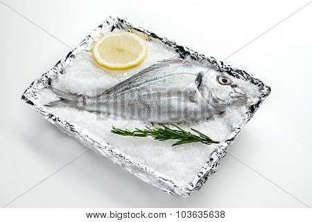 Raw Dorada On Sea Salt In Plate Covered With Foil