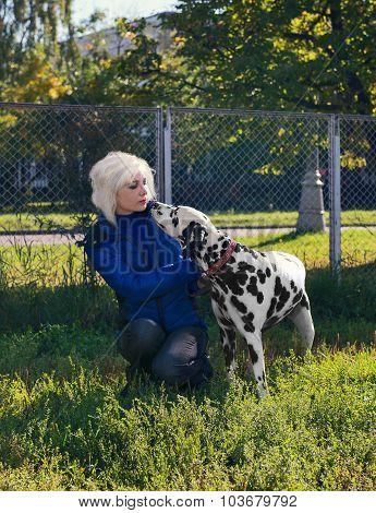 Dog Dalmatian and women