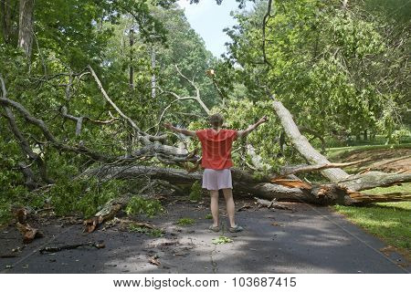 Woman Blocked By Tree Lying Across The Road