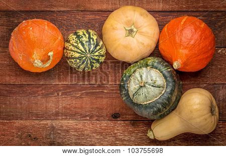 a variety of winter squash fruits on a rustic wooden table with a copy space, fall holiday background