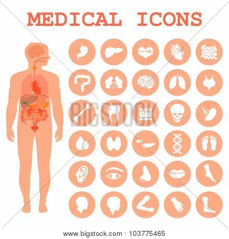 medical infographic icons
