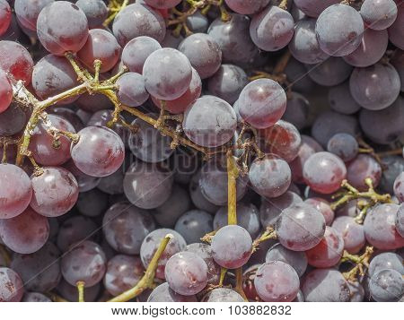 Red Grape Fruits
