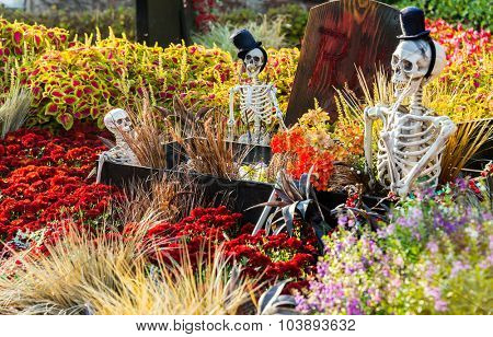 SEOUL, SOUTH KOREA - OCTOBER 25: Halloween party decorations at Everland Theme Park on OCTOBER 25, 2013 in Seoul, South Korea