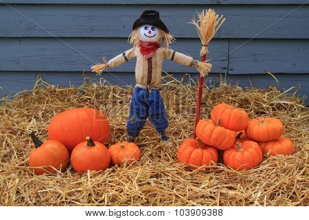 Pumpkins, Thanksgiving And Scarecrow