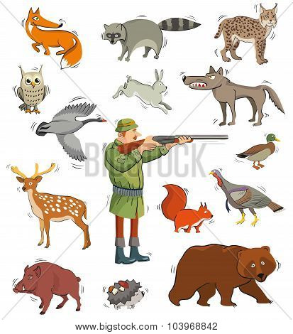 hunter and wild animals