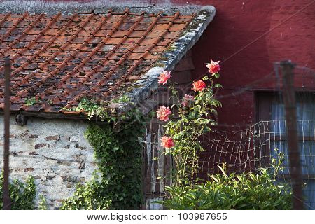 Village Cottage With Red Painted Wall