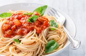 Spaghetti pasta with tomato sauce and basil herb garnish, simple ready to eat meal poster
