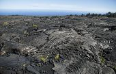 view of Lava fields (volcanic rock) on the big island, Hawaii, United States poster