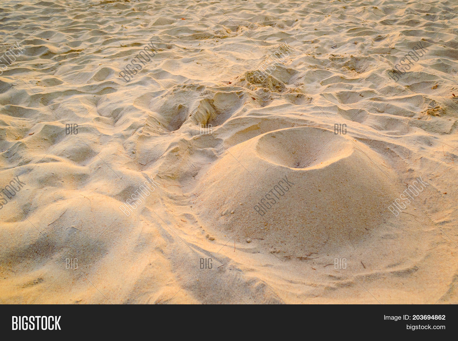 Fine Beach Sand Structure In The Summer Sun