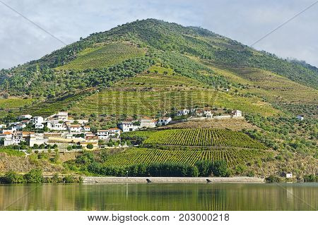 Portuguese Village Surrounded by Vineyards on the Banks of the River Douro