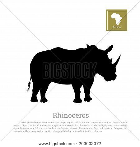 Black silhouette of a rhino on a white background. Big rhinoceros. African animals. Vector illustration