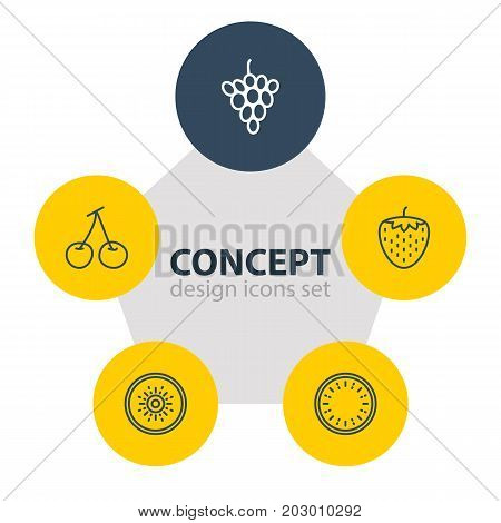 Editable Pack Of Morello, Vineyard, Berry And Other Elements.  Vector Illustration Of 5 Berry Icons.