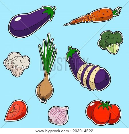 Set of vegetables sticker style. Set contains onion broccoli tomato garlic eggplant cabbage carrot cauliflower sliced and whole.