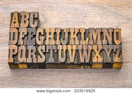 English alphabet abstract in vintage letterpress wood type printing blocks against grained wood.