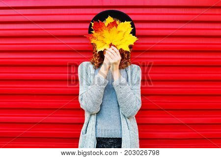 Fashion Autumn Portrait Woman Hides Her Face Yellow Maple Leaves On A Red Background