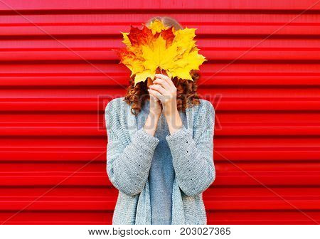 Fashion Autumn Woman Hides Her Face Yellow Maple Leaves On A Red Background