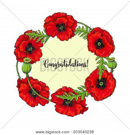 Vector red poppy flower blooming template. Isolated illustration on a white background. Realistic hand drawn blossom with stem and leaves. Floral congratulatory, greeting card template