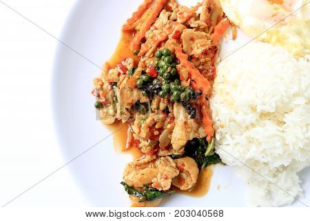 Stir Fried Chicken With Roasted Chili Paste And Fresh Piper Nigrum On Jasmine Rice In White Plate On