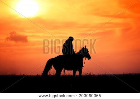 rider on horseback in a steppe during colorful sunset, Kazakhstan.