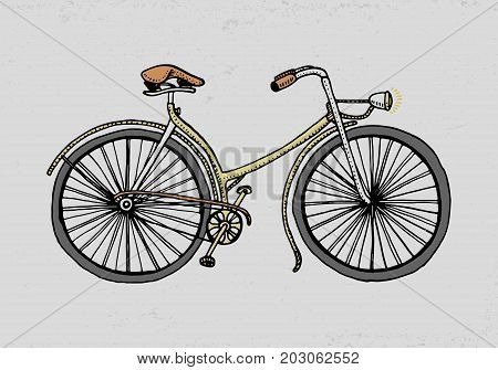 bicycle, bike or velocipede. travel illustration. engraved hand drawn in old sketch style, vintage transport