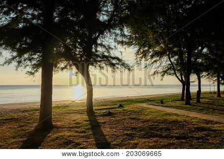 Sunset at sea with trees sway at Chaolao Tosang Beach Chanthaburi Thailand for nature background or texture.