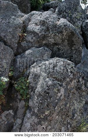 Eroded and weathered volcanic rock in Yellowstone National Park
