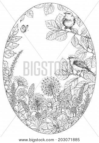 Hand drawn floral elements. Black and white flowers plants butterfly and sitting songbirds on branches. Monochrome vector sketch. Oval frame. Space for text.